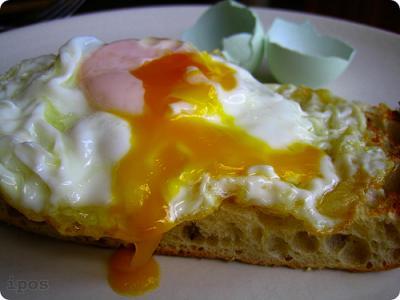 Apología del huevo frito